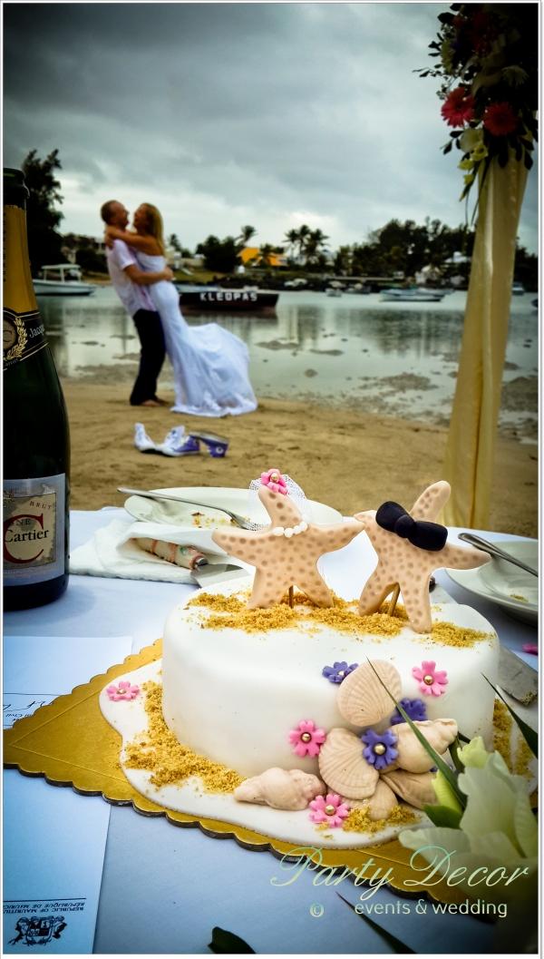 party decor  beau bassin  mauritius