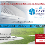 HEAVEN ENTERPRISES LTD 2